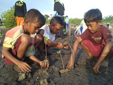 Protecting coastal ecosystems